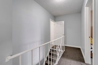 Photo 22: 212 7007 4A Street SW in Calgary: Kingsland Apartment for sale : MLS®# A1112502