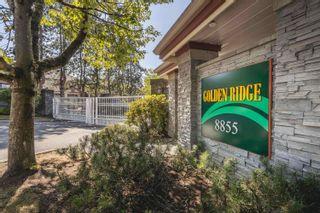 "Photo 1: 3 8855 212 Street in Langley: Walnut Grove Townhouse for sale in ""GOLDEN RIDGE"" : MLS®# R2612117"