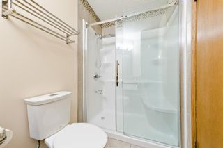 Photo 29: 45 Martinview Crescent NE in Calgary: Martindale Detached for sale : MLS®# A1112618