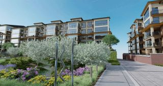 """Photo 9: 201 8561 203A Street in Langley: Langley City Condo for sale in """"Yorkson Park Central"""" : MLS®# R2575099"""