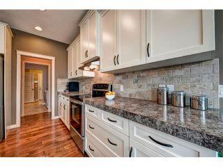 Photo 13: 23 AUTUMN Gardens SE in Calgary: Auburn Bay House for sale : MLS®# C4017577