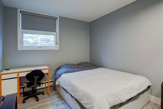Photo 23: 101 1027 Cameron Avenue SW in Calgary: Lower Mount Royal Apartment for sale : MLS®# A1062021