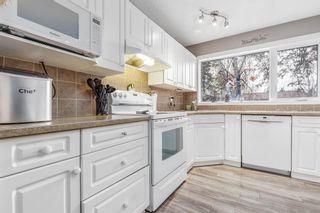 Photo 5: 260 Van Horne Crescent NE in Calgary: Vista Heights Detached for sale : MLS®# A1144476