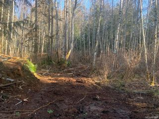 Photo 15: 2740 Phillips Rd in : Sk Phillips North Land for sale (Sooke)  : MLS®# 861867