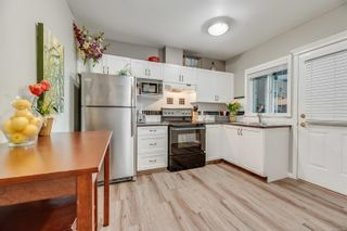 Photo 31: 4005 Santa Rosa Pl in Saanich: SW Strawberry Vale House for sale (Saanich West)  : MLS®# 884709