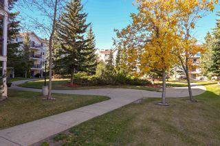 Photo 33: 241 10636 120 Street in Edmonton: Zone 08 Condo for sale : MLS®# E4265580