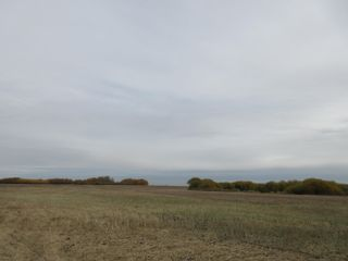 Photo 6: 55101 RR 270: Rural Sturgeon County Rural Land/Vacant Lot for sale : MLS®# E4265205