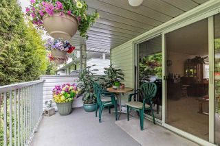"""Photo 36: 13 2988 HORN Street in Abbotsford: Central Abbotsford Townhouse for sale in """"Creekside Park"""" : MLS®# R2583672"""