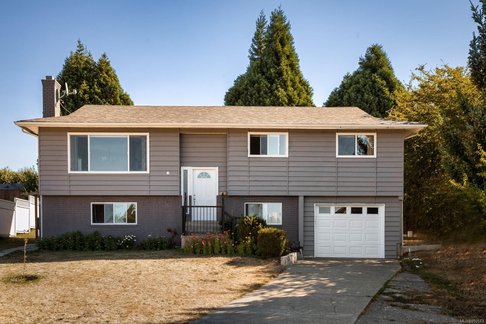 Main Photo: 791 Cameo St in : SE High Quadra House for sale (Saanich East)  : MLS®# 856573
