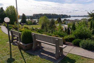 Photo 3: 216 22611 116 Avenue in Maple Ridge: East Central Condo for sale : MLS®# R2496889
