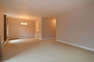 """Photo 13: 108 1266 W 13TH Avenue in Vancouver: Fairview VW Condo for sale in """"LANDMARK SHAUGHNESSY"""" (Vancouver West)  : MLS®# R2002053"""
