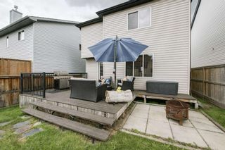 Photo 43: 234 ELGIN View SE in Calgary: McKenzie Towne Detached for sale : MLS®# A1035029