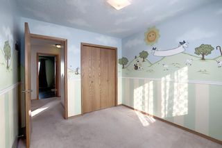 Photo 21: 65 Hawkville Close NW in Calgary: Hawkwood Detached for sale : MLS®# A1067998