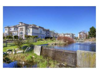 """Photo 10: 130 5500 ANDREWS Road in Richmond: Steveston South Condo for sale in """"SOUTHWATER"""" : MLS®# V882835"""