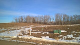 Photo 6: 56 25527 TWP RD 511A Road: Rural Parkland County Rural Land/Vacant Lot for sale : MLS®# E4191642