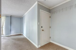Photo 11: 309 315 HERITAGE Drive SE in Calgary: Acadia Apartment for sale : MLS®# A1029612