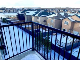 Photo 17: 417 508 ALBANY Way in Edmonton: Zone 27 Condo for sale : MLS®# E4229451