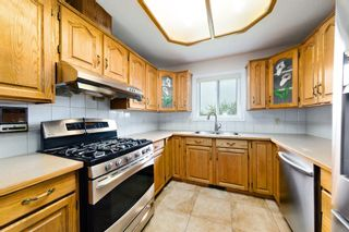Photo 14: 45 Martinview Crescent NE in Calgary: Martindale Detached for sale : MLS®# A1112618