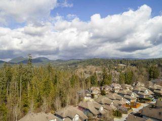 Photo 39: 22805 137th Avenue Maple Ridge For Sale