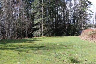 Photo 4: Lot 1 Tomswood Rd in : PA Alberni Valley Land for sale (Port Alberni)  : MLS®# 871069