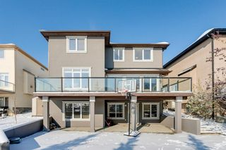 Photo 42: 108 Stonemere Point: Chestermere Detached for sale : MLS®# A1045824