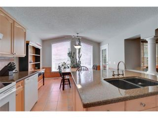 Photo 10: 83 MT SELKIRK Close SE in Calgary: McKenzie Lake House for sale : MLS®# C4066159