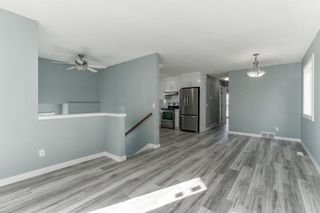 Photo 9: 23 Erin Meadows Court SE in Calgary: Erin Woods Detached for sale : MLS®# A1146245