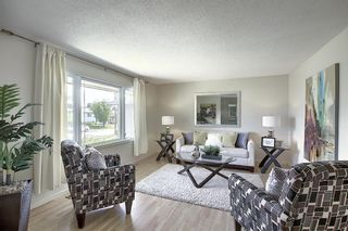 Photo 10: 48 DOVERTHORN Place SE in Calgary: Dover Detached for sale : MLS®# A1023255