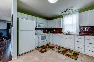 Photo 15: 3613 44 Avenue in Edmonton: Zone 29 House for sale : MLS®# E4246393