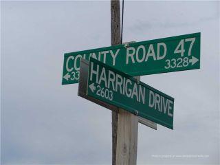 Photo 5: 3339 County Road 47 Road in Ramara: Rural Ramara Property for sale : MLS®# S3802737