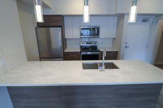 Photo 4: 305 80 Philip Lee Drive in Winnipeg: Crocus Meadows Condominium for sale (3K)  : MLS®# 202104241