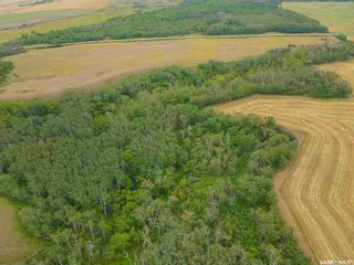 Photo 11: Rm Indian Head 160.39 acres in Indian Head: Farm for sale (Indian Head Rm No. 156)  : MLS®# SK867616