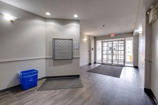 Photo 22: 506 10346 117 Street in Edmonton: Zone 12 Condo for sale : MLS®# E4241958