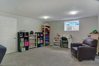 Photo 28: 30 CHAPMAN Place SE in Calgary: Chaparral Detached for sale : MLS®# C4258371