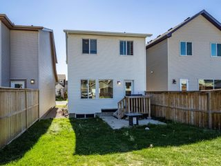 Photo 18: 250 Cranford Way SE in Calgary: Cranston Detached for sale : MLS®# A1144845