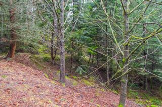 Photo 25: 2604 Yardarm Rd in : GI Pender Island Land for sale (Gulf Islands)  : MLS®# 863927