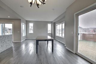 Photo 20: 6 Redstone Manor NE in Calgary: Redstone Detached for sale : MLS®# A1106448