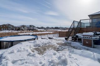 Photo 35: 62 Red Lily Road in Winnipeg: Sage Creek Residential for sale (2K)  : MLS®# 202104388
