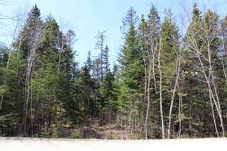 Photo 4: 88 Otter Point in East Chester: 405-Lunenburg County Vacant Land for sale (South Shore)  : MLS®# 202119232
