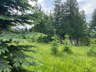 Photo 8: 30 Walsh Road in Blind Bay: SHUSWAP LAKE ESTATES Vacant Land for sale : MLS®# 10235083