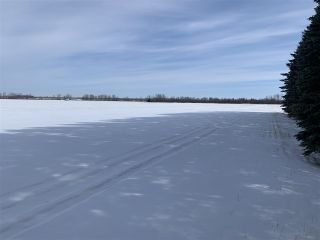 Photo 4: RR 25 HWY 661: Rural Westlock County Rural Land/Vacant Lot for sale : MLS®# E4236665