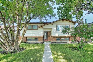 Photo 1: 212 Rundlefield Road NE in Calgary: Rundle Detached for sale : MLS®# A1129296