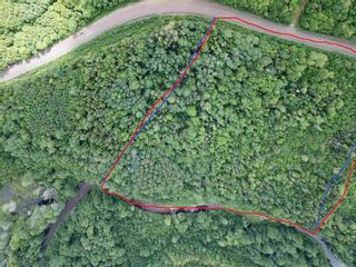 Photo 5: Lot Piedmont Valley Road in Avondale: 108-Rural Pictou County Vacant Land for sale (Northern Region)  : MLS®# 202114568