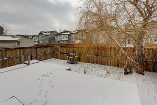 Photo 29: 59 New Brighton Link SE in Calgary: New Brighton Detached for sale : MLS®# A1086384