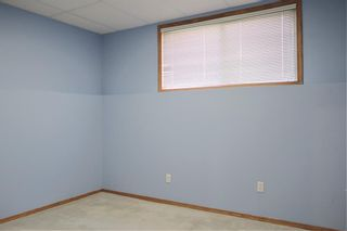 Photo 38: 170 Tipping Close SE: Airdrie Detached for sale : MLS®# A1121179