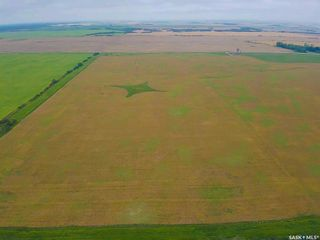 Photo 5: Rm Indian Head 152.87 Acres in Indian Head: Farm for sale (Indian Head Rm No. 156)  : MLS®# SK867614