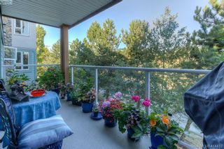 Photo 19: 309 490 Marsett Pl in VICTORIA: SW Royal Oak Condo for sale (Saanich West)  : MLS®# 822080