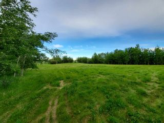 Photo 3: 53145 RGE RD 223: Rural Strathcona County Rural Land/Vacant Lot for sale : MLS®# E4250369
