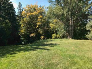Photo 8: 9331 148 Street in Edmonton: Zone 10 Vacant Lot for sale : MLS®# E4258351