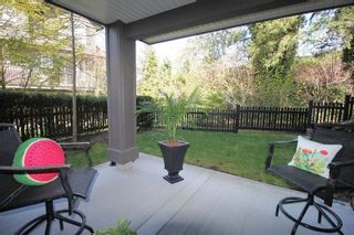 """Photo 16: 26 21867 50 Avenue in Langley: Murrayville Townhouse for sale in """"Winchester"""" : MLS®# R2260312"""